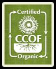 logo certyfikatu CCOF