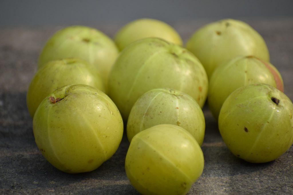 owoce amalaki - agrestu indyjskiego